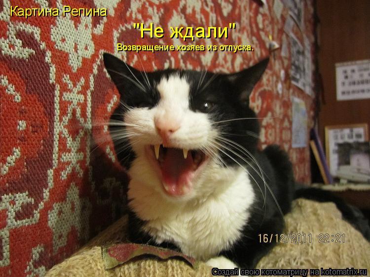 """Котоматрица: Картина Репина Возвращение хозяев из отпуска. """"Не ждали"""""""