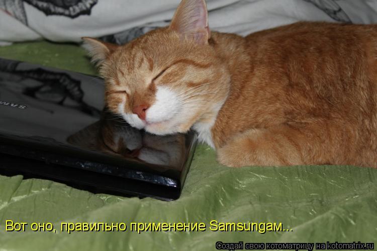 Котоматрица: Вот оно, правильно применение Samsungам...