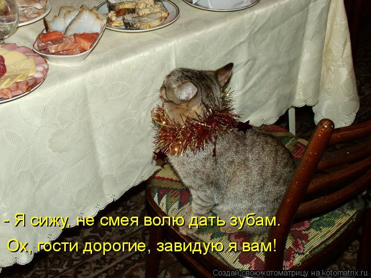 Котоматрица: Ох, гости дорогие, завидую я вам! - Я сижу, не смея волю дать зубам.