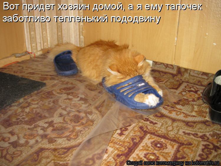 Котоматрица - Вот придет хозяин домой, а я ему тапочек заботливо тепленький пододвин