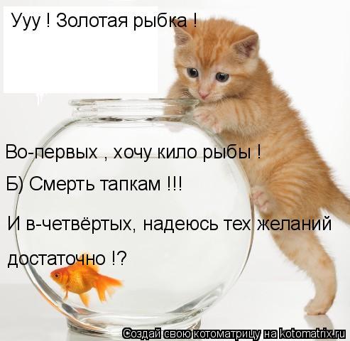 Котоматрица: Ууу ! Золотая рыбка ! Во-первых , хочу кило рыбы ! Б) Смерть тапкам !!! И в-четвёртых, надеюсь тех желаний  достаточно !?