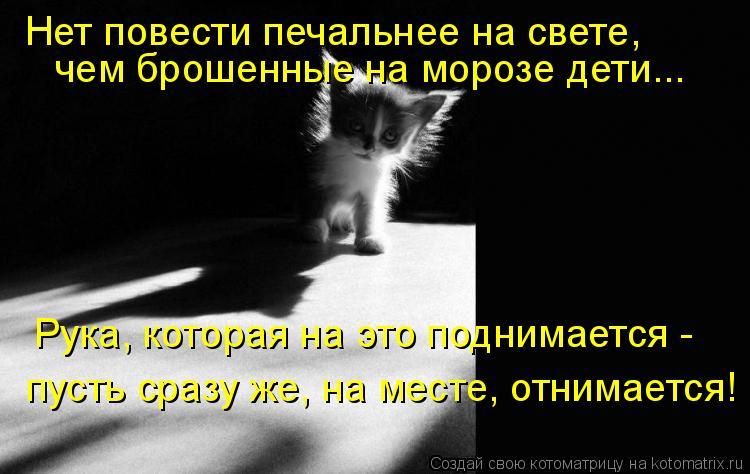 Котоматрица: Рука, которая на это поднимается -  пусть сразу же, на месте, отнимается! Нет повести печальнее на свете,  чем брошенные на морозе дети...