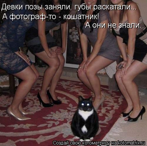Котоматрица: Девки позы заняли, губы раскатали... А фотограф-то - кошатник!  А они не знали.