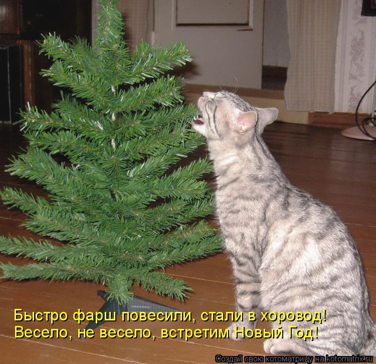 Котоматрица: Весело, не весело, встретим Новый Год! Быстро фарш повесили, стали в хоровод!