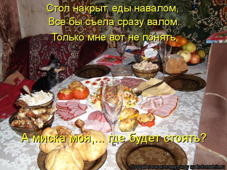 Котоматрица: Стол накрыт, еды навалом, Все бы съела сразу валом. Только мне вот не понять, А миска моя,... где будет стоять?