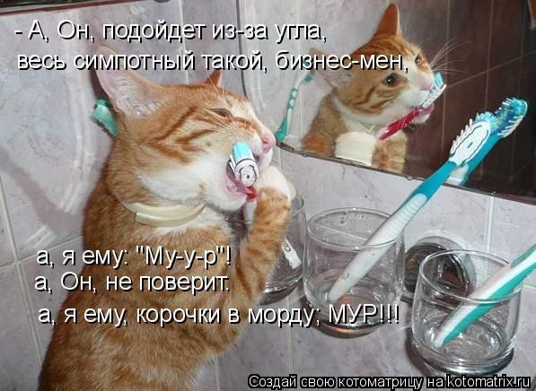 """Котоматрица: - А, Он, подойдет из-за угла, весь симпотный такой, бизнес-мен, а, я ему: """"Му-у-р""""! а, Он, не поверит. а, я ему, корочки в морду; МУР!!!"""