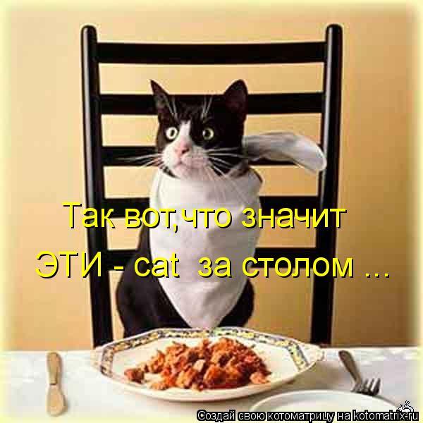 Котоматрица: Так вот,что значит  ЭТИ - cat  за столом ...