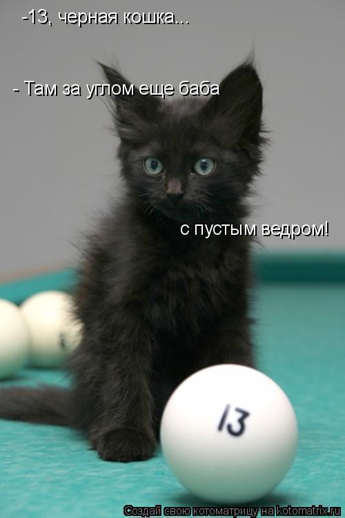 Котоматрица: -13, черная кошка... - Там за углом еще баба  с пустым ведром!