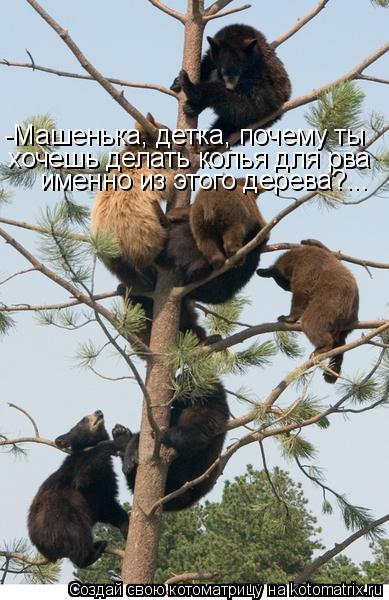 Котоматрица: -Машенька, детка, почему ты  хочешь делать колья для рва именно из этого дерева?...