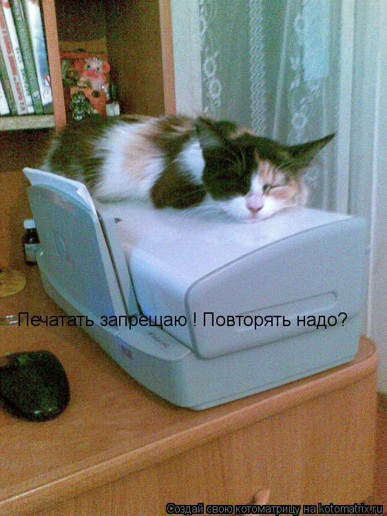 Котоматрица: Печатать запрещаю ! Повторять надо?