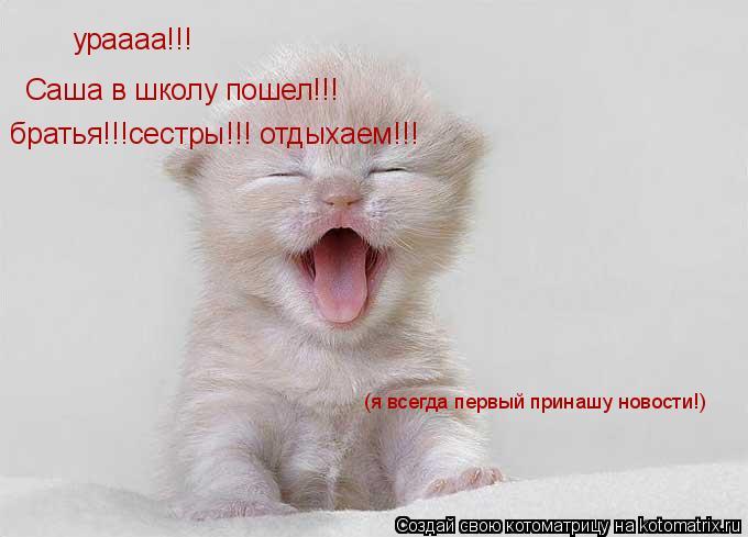 Котоматрица: ураааа!!!  Саша в школу пошел!!! братья!!!сестры!!! отдыхаем!!! (я всегда первый принашу новости!)