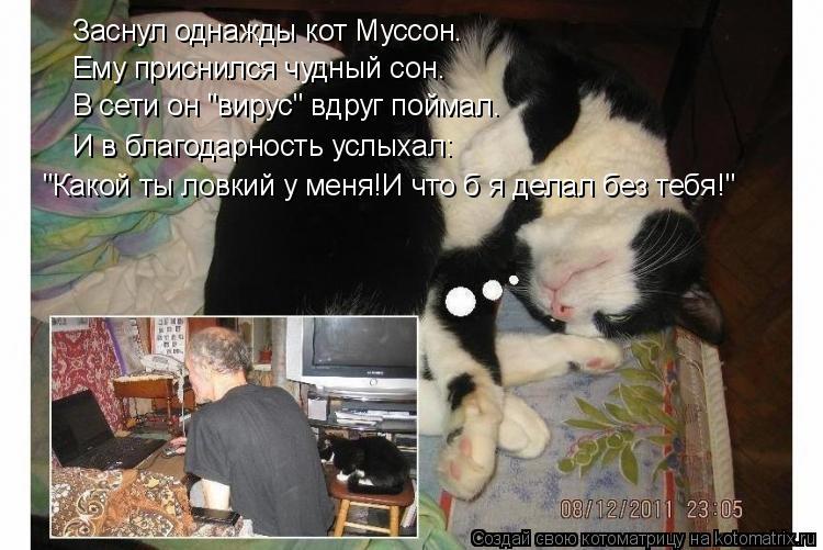 """Котоматрица: Заснул однажды кот Муссон. В сети он """"вирус"""" вдруг поймал. И в благодарность услыхал: """"Какой ты ловкий у меня!И что б я делал без тебя!"""" Ему прис"""