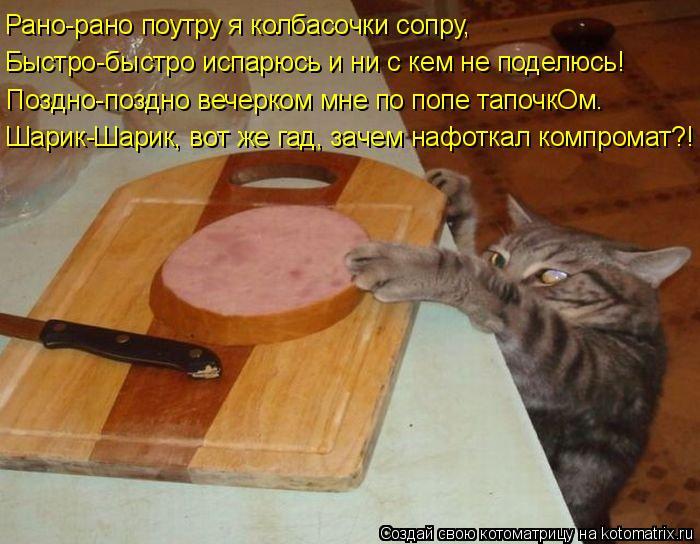 Котоматрица: Рано-рано поутру я колбасочки сопру, Быстро-быстро испарюсь и ни с кем не поделюсь! Поздно-поздно вечерком мне по попе тапочкОм. Шарик-Шарик,