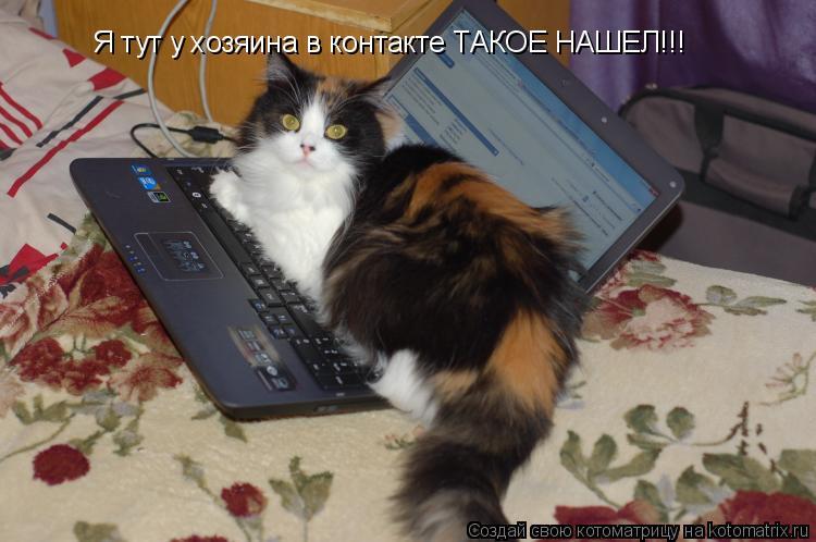Котоматрица: Я тут у хозяина в контакте ТАКОЕ НАШЕЛ!!!