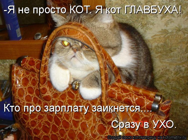 Котоматрица: -Я не просто КОТ. Я кот ГЛАВБУХА! Кто про зарплату заикнется.... Сразу в УХО.