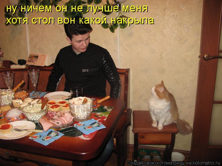 Котоматрица: ну ничем он не лучше меня хотя стол вон какой накрыла