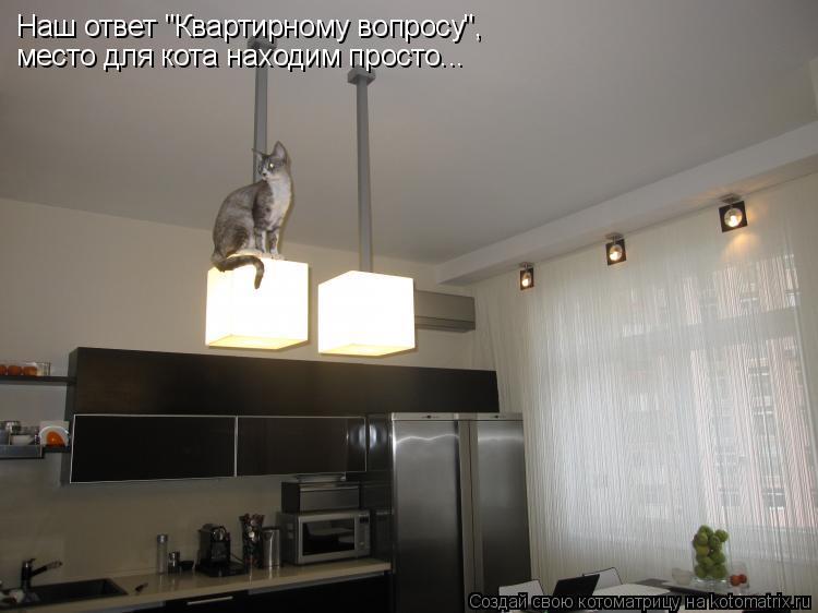 """Котоматрица: Наш ответ """"Квартирному вопросу"""", место для кота находим просто..."""