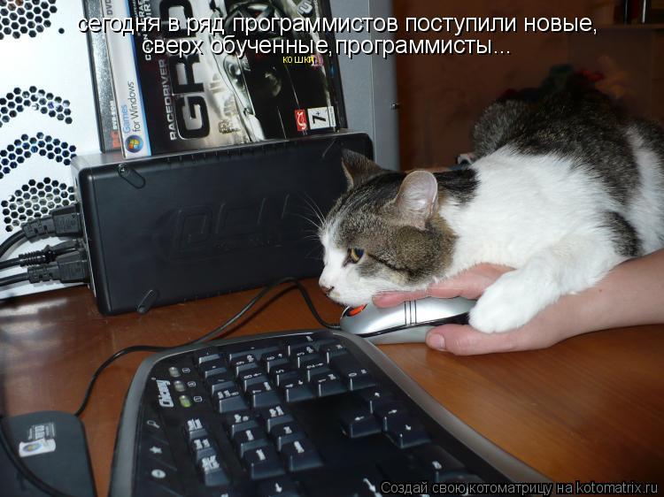 Котоматрица: сегодня в ряд программистов поступили новые,    сверх обученные,программисты... кошки