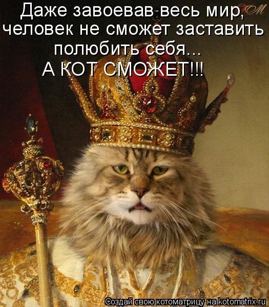 Котоматрица: Даже завоевав весь мир, человек не сможет заставить полюбить себя... А КОТ СМОЖЕТ!!!