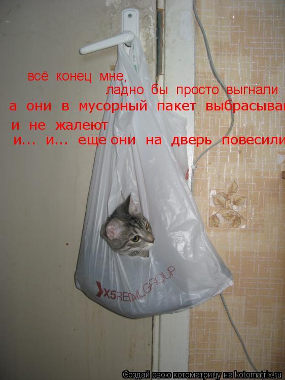Котоматрица: всё  конец  мне, ладно  бы  просто  выгнали  а  они  в  мусорный  пакет  выбрасывают и  не  жалеют и...  и...  еще они  на  дверь  повесили,