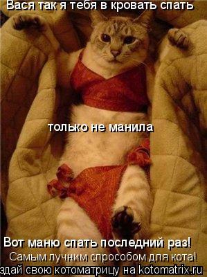 Котоматрица: Вася так я тебя в кровать спать только не манила Вот маню спать последний раз! Самым лучним спрособом для кота!