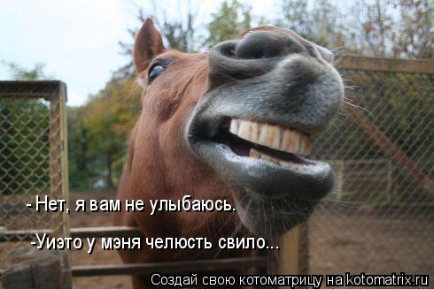 Котоматрица: - Нет, я вам не улыбаюсь. -Уиэто у мэня челюсть свило...