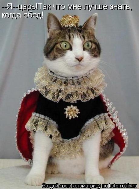 Котоматрица: --Я--царь!Так что мне лучше знать, когда обед!