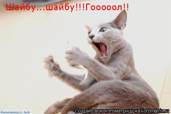 Котоматрица: Шайбу...шайбу!!!Гооооол!!