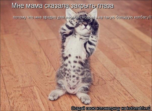 Котоматрица: Мне мама сказала закрыть глаза потому что мне вредно для нервов смотреть на такую большую колбасу!!!