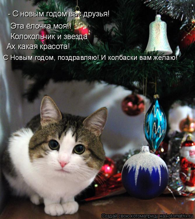 Котоматрица: - С новым годом вас друзья! Эта ёлочка моя!! Колокольчик и звезда Ах какая красота! С Новым годом, поздравляю! И колбаски вам желаю!