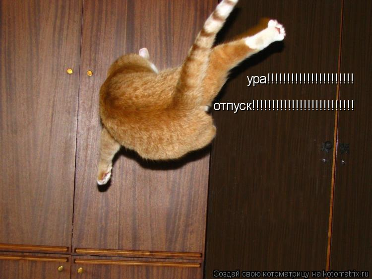 Котоматрица: ура!!!!!!!!!!!!!!!!!!!!!! отпуск!!!!!!!!!!!!!!!!!!!!!!!!!!