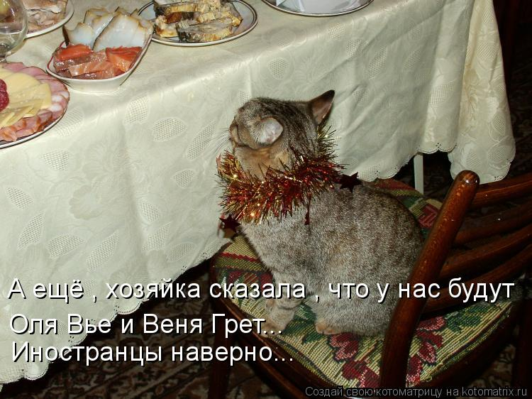 Котоматрица: А ещё , хозяйка сказала , что у нас будут  Оля Вье и Веня Грет... Иностранцы наверно...