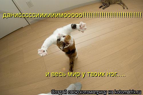 Котоматрица: данисссссиииииимооооо!!!!!!!!!!!!!!!!!!!!!!!!!!!! и весь мир у твоих ног.....