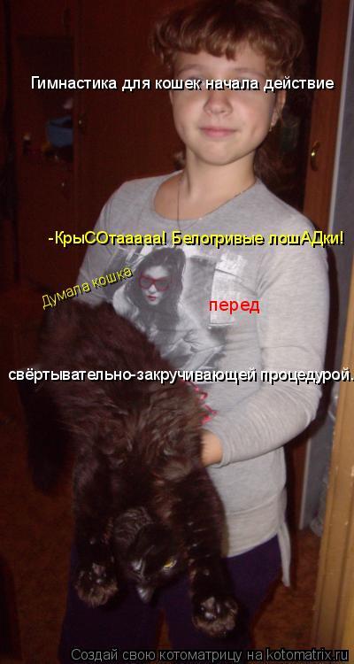 Котоматрица: Гимнастика для кошек начала действие -КрыСОтааааа! Белогривые лошАДки! Думала кошка  перед  свёртывательно-закручивающей процедурой.
