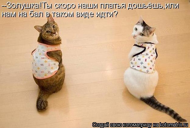 Котоматрица: --Золушка!Ты скоро наши платья дошьёшь,или нам на бал в таком виде идти?