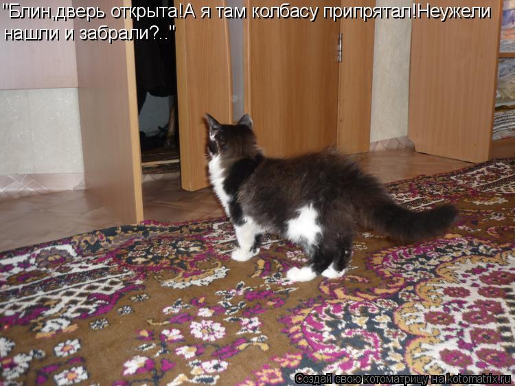 http://kotomatrix.ru/images/lolz/2011/12/27/1071370.jpg