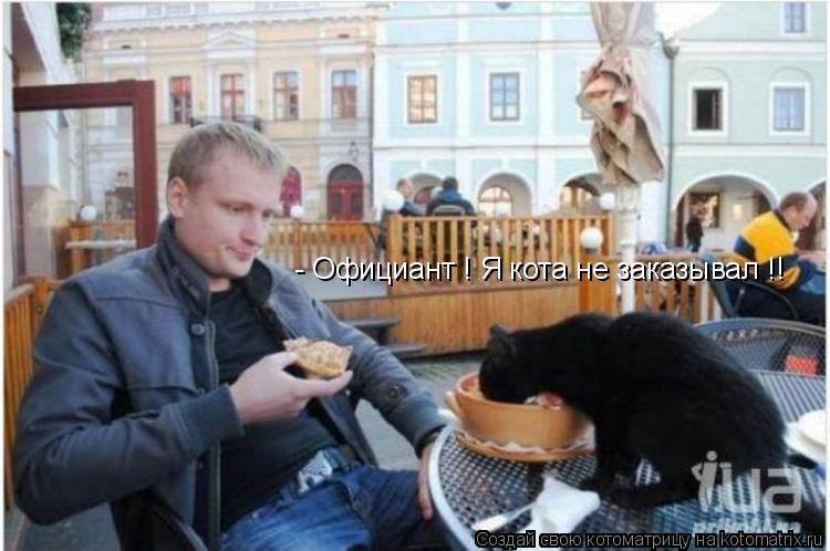 Котоматрица: - Официант ! Я кота не заказывал !!
