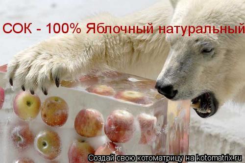 Котоматрица: СОК - 100% Яблочный натуральный