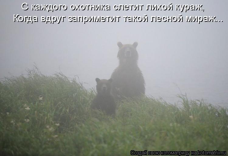 Котоматрица: С каждого охотника слетит лихой кураж, Когда вдруг заприметит такой лесной мираж...