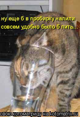 Котоматрица: ну еще б в пробирку налили совсем удобно было б пить...