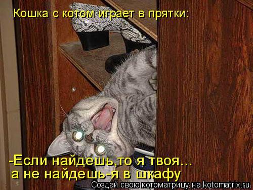 Котоматрица: Кошка с котом играет в прятки: -Если найдешь,то я твоя... а не найдешь-я в шкафу