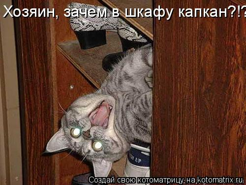 Котоматрица: Хозяин, зачем в шкафу капкан?!?!