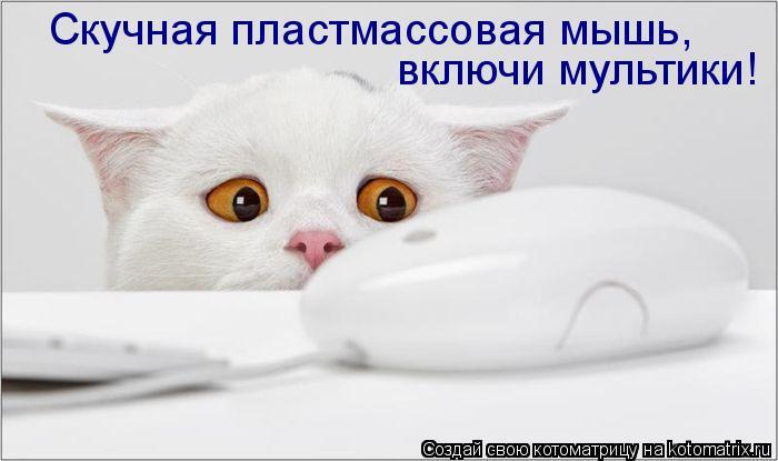 Котоматрица: Скучная пластмассовая мышь, включи мультики!