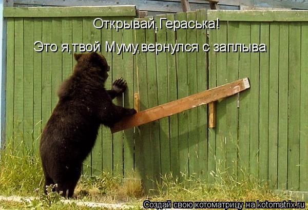Котоматрица: Открывай,Гераська!  Это я,твой Муму,вернулся с заплыва