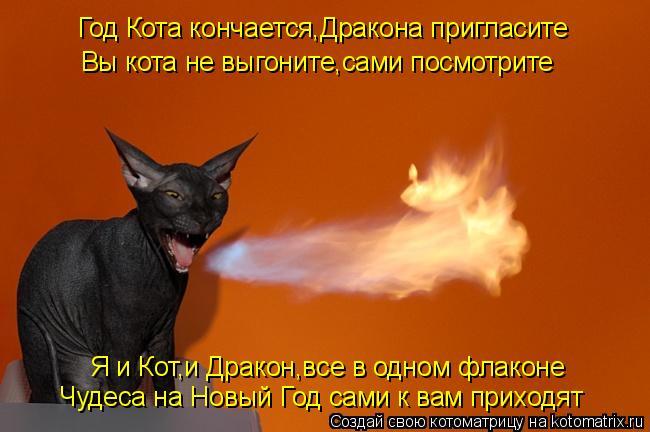 Котоматрица: Год Кота кончается,Дракона пригласите Я и Кот,и Дракон,все в одном флаконе Чудеса на Новый Год сами к вам приходят Вы кота не выгоните,сами п