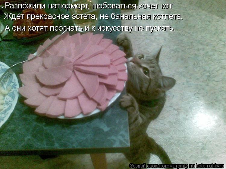 Котоматрица: Разложили натюрморт, любоваться хочет кот. Ждёт прекрасное эстета, не банальная котлета. А они хотят прогнать и к искусству не пускать.