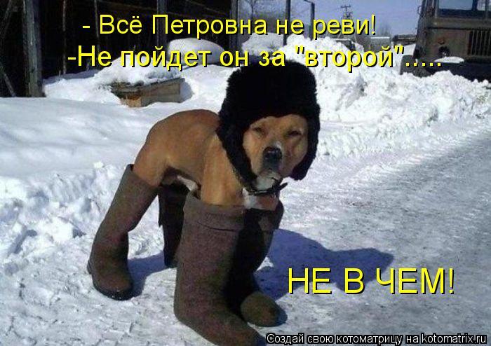 Котоматрица - - Всё Петровна не реви! -Не пойдет он за