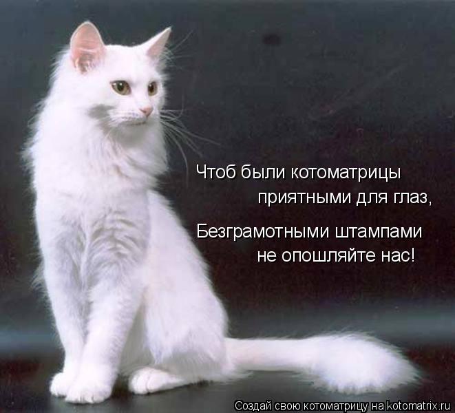 Котоматрица: Чтоб были котоматрицы приятными для глаз, Безграмотными штампами не опошляйте нас!