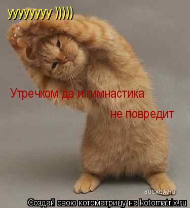 Котоматрица: уууууууу )))))  Утречком да и гимнастика  не повредит не повредит