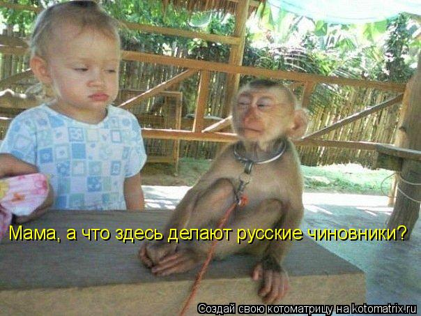 Котоматрица: Мама, а что здесь делают русские чиновники?